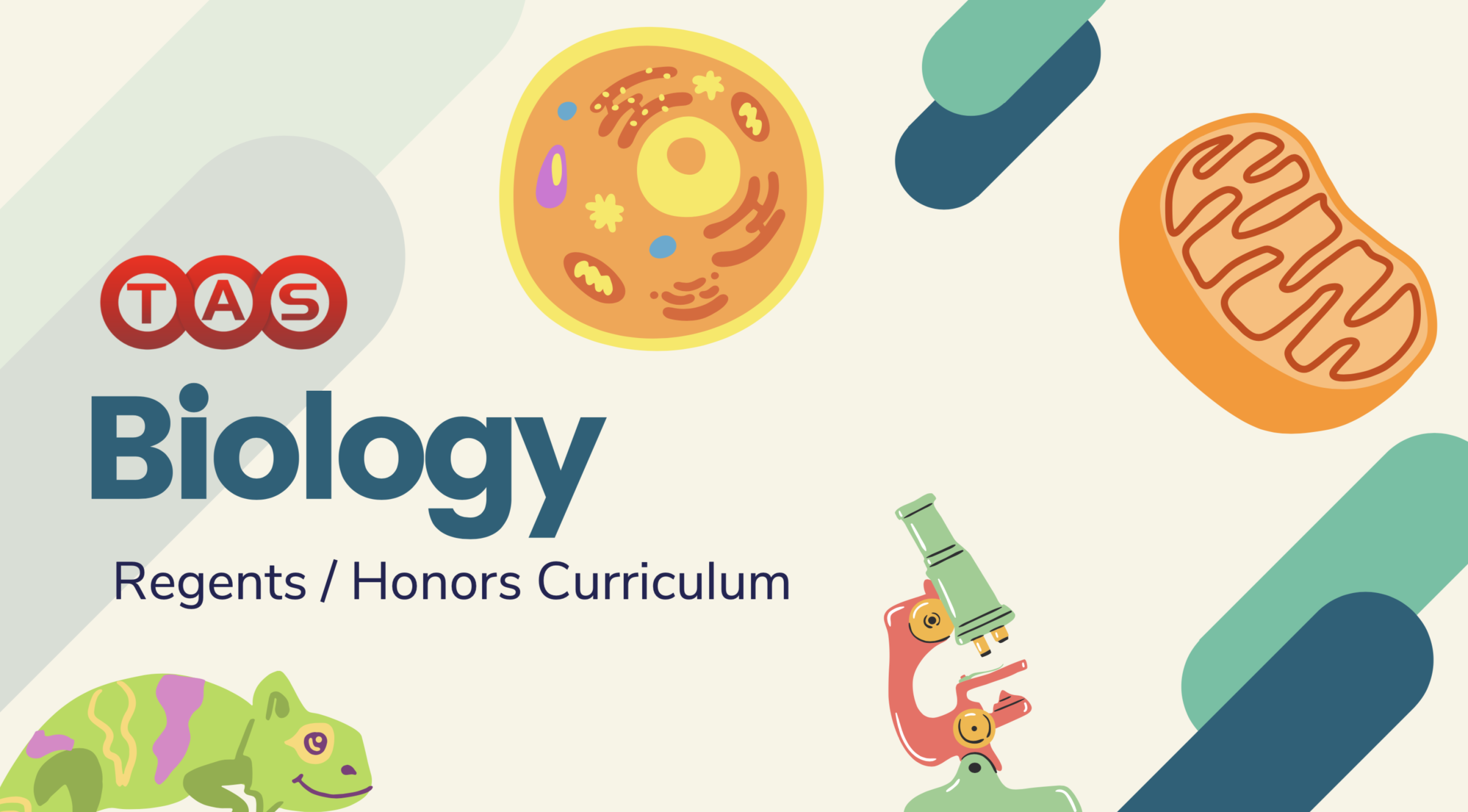 biology curriculum